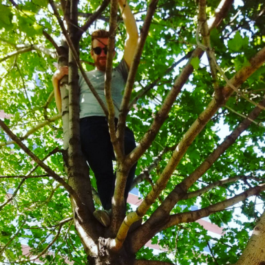Cam in one of our favourite climbing trees
